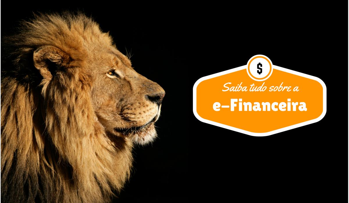 e-Financeira Sonegação de Impostos